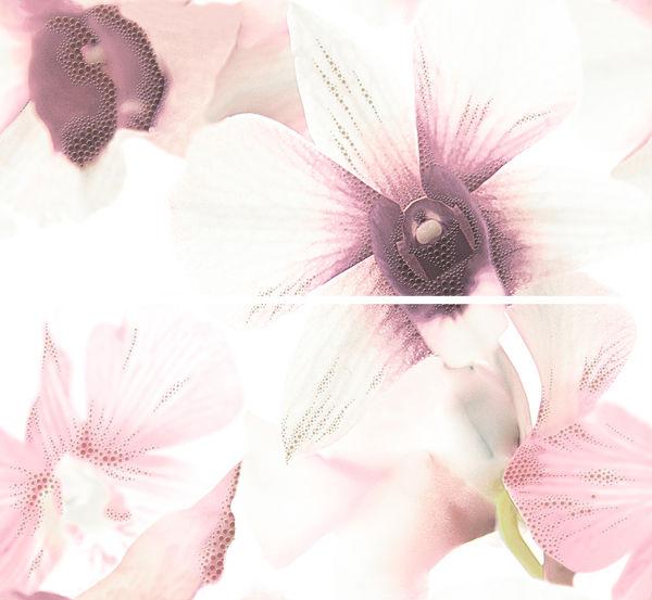 Панно MAYA flower розовый