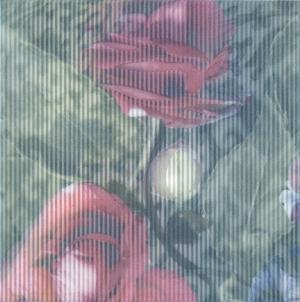 Декор Весеннее шоу Розы