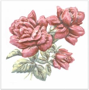 Декор Оранжерея Розы